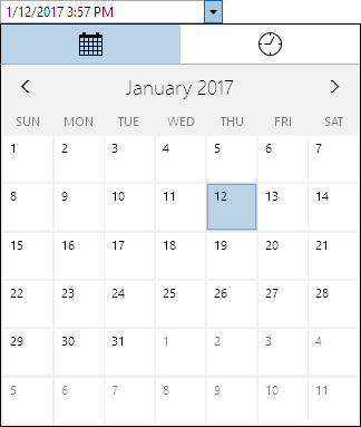 DateTimeEditBoxOpened